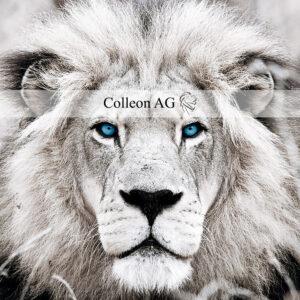 Corazon-Communication-Business- Erfolgstorie - Colleon - Dialog Control